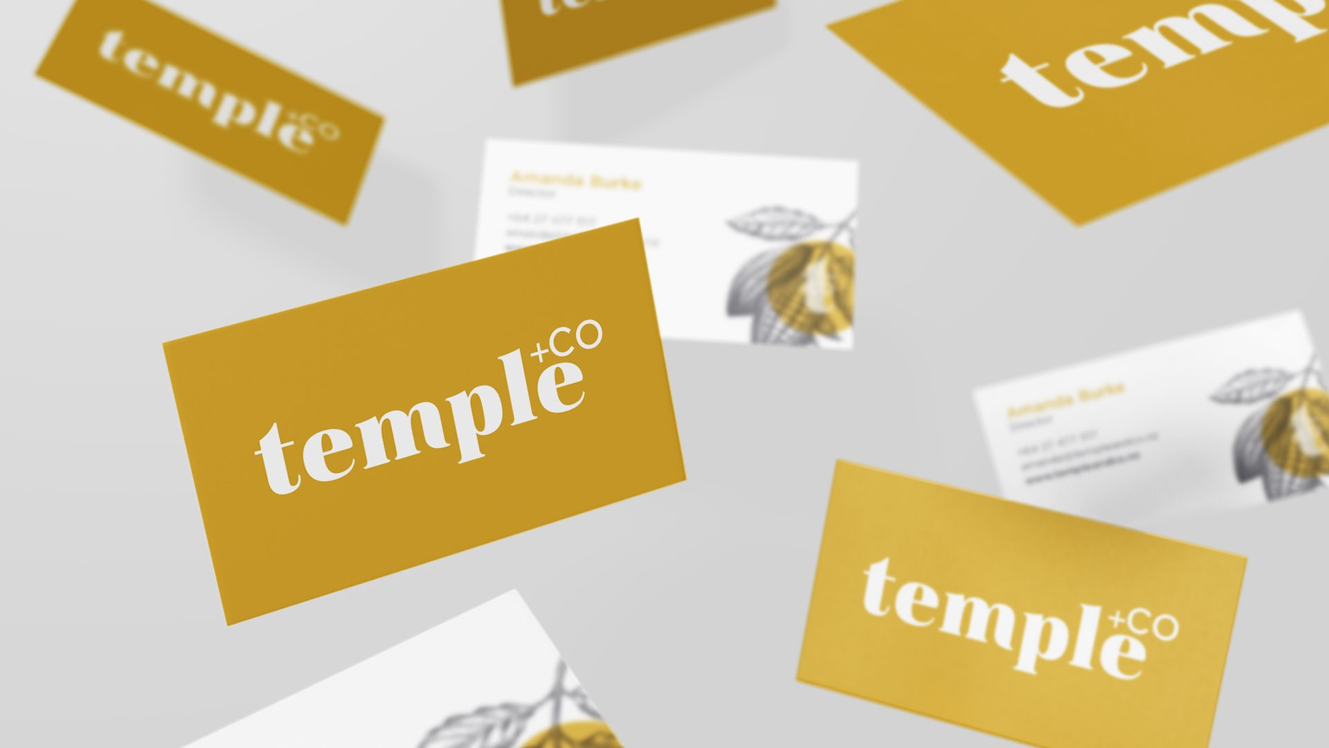 Temple+Co business cards