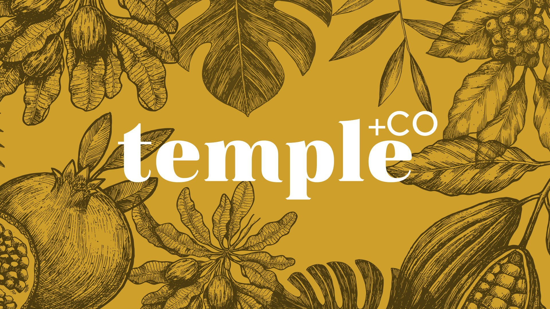 Temple+Co branding on patterned background